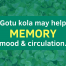 Gotu Kola / Centella header
