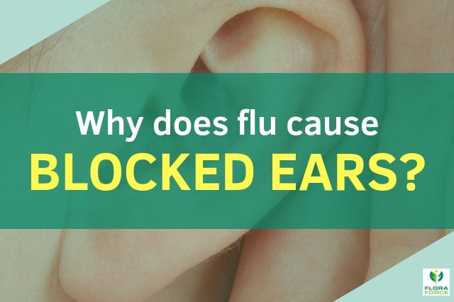 why does flu cause blocked ears